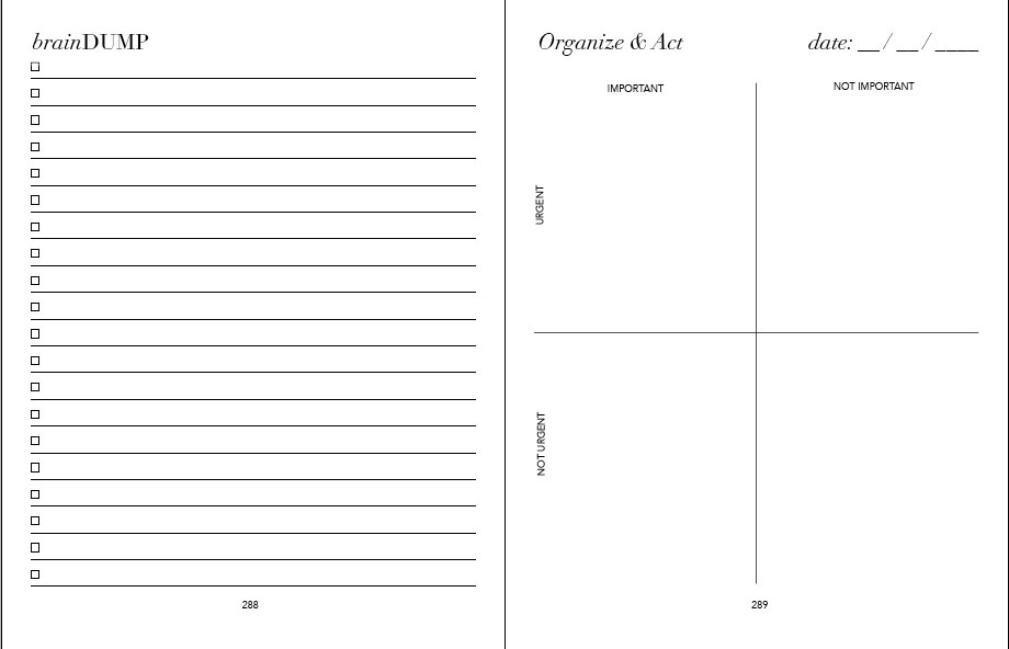 picture relating to Brain Dump Printable referred to as Outstanding Designs Deal Printable PDF