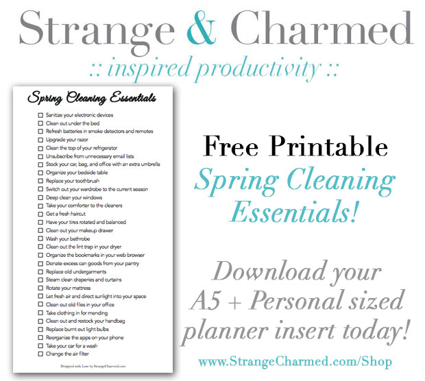 Free-Printable-Spring-Cleaning-Essentials