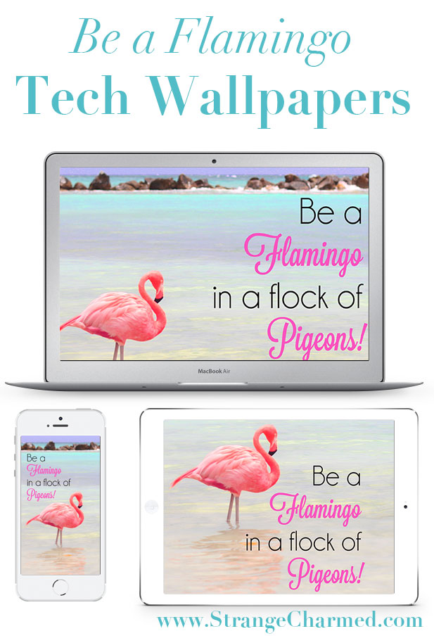 Be a Flamingo Tech Wallpaper