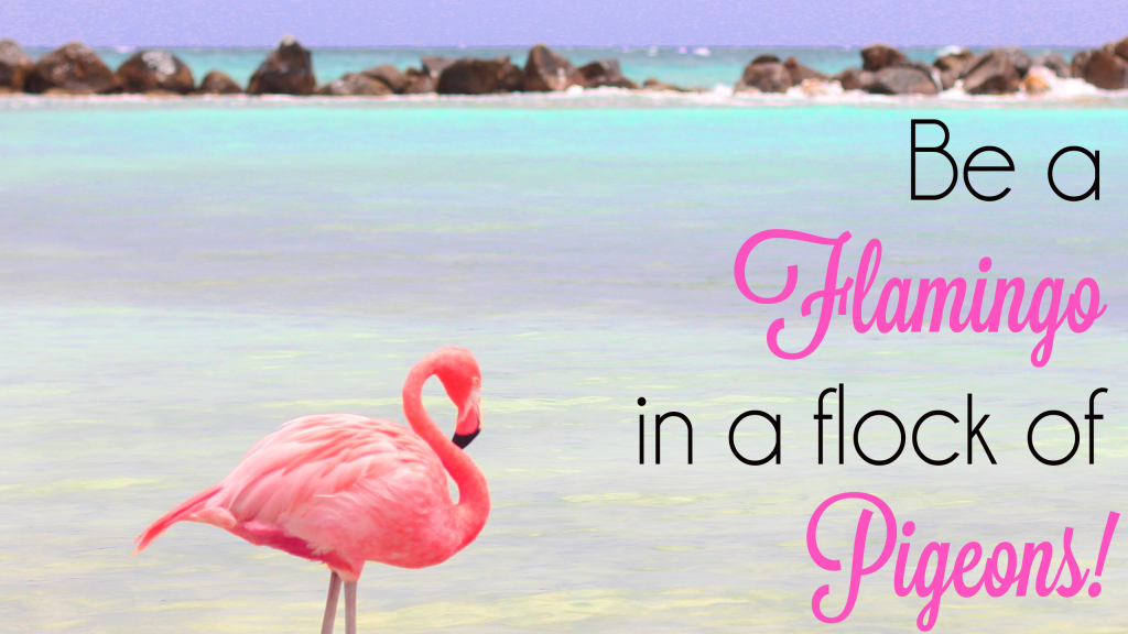Be a Flamingo in a Flock of Pigeons Desktop Wallpaper