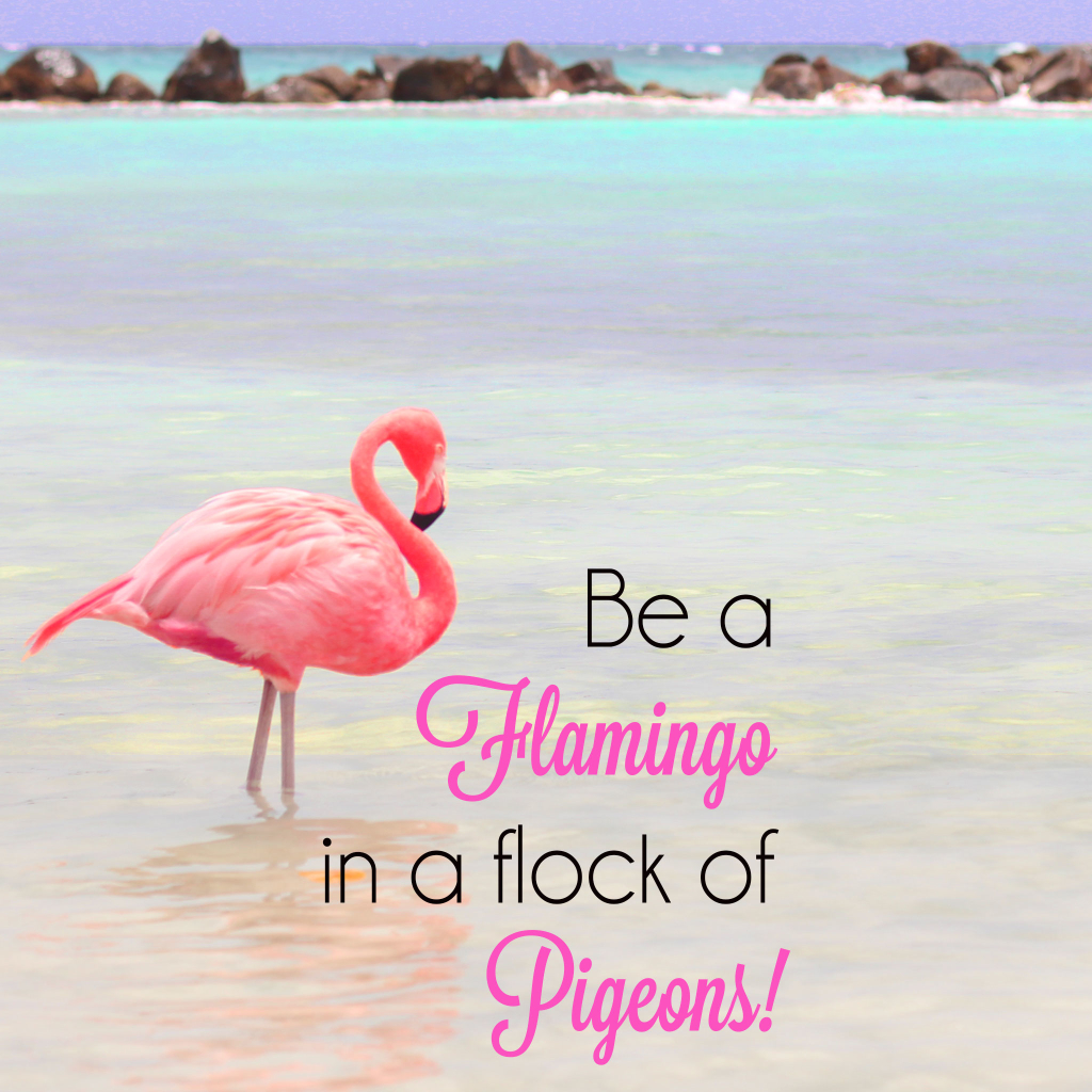 Be a Flamingo in a flock of Pigeons iPad Wallpaper