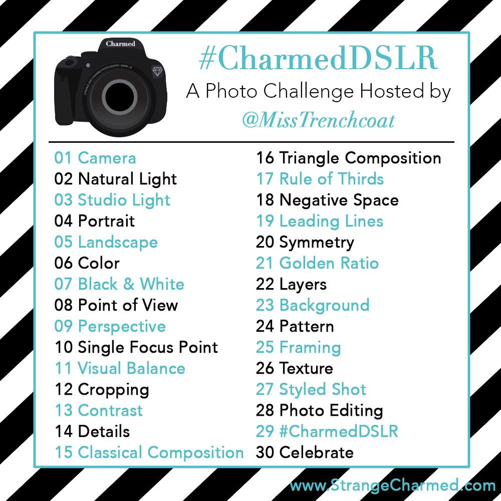 Dslr Archives Strange Charmedstrange Charmed Camera Circuit Board Promotiononline Shopping For Promotional As In Digital Styling Lightroom