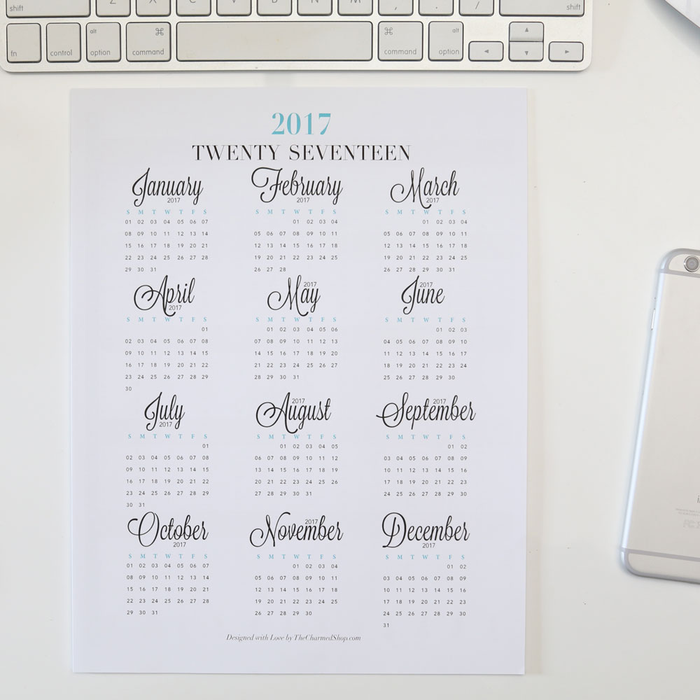 2017 Year at a Glance Calendar Overview for Planners, Desk or Office Wall!
